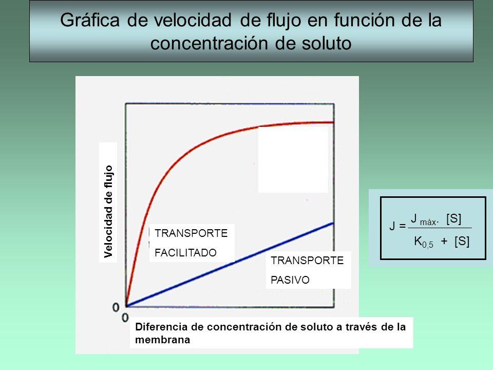Gráfica de velocidad de flujo en función de la concentración de soluto TRANSPORTE FACILITADO TRANSPORTE PASIVO Diferencia de concentración de soluto a