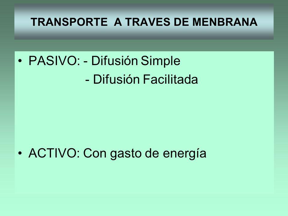 TRANSPORTE A TRAVES DE MENBRANA PASIVO: - Difusión Simple - Difusión Facilitada ACTIVO: Con gasto de energía