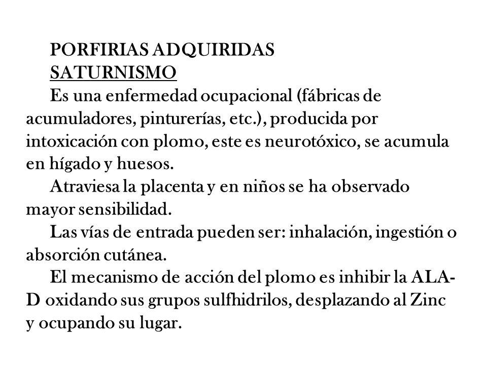PORFIRIAS ADQUIRIDAS SATURNISMO Es una enfermedad ocupacional (fábricas de acumuladores, pinturerías, etc.), producida por intoxicación con plomo, est
