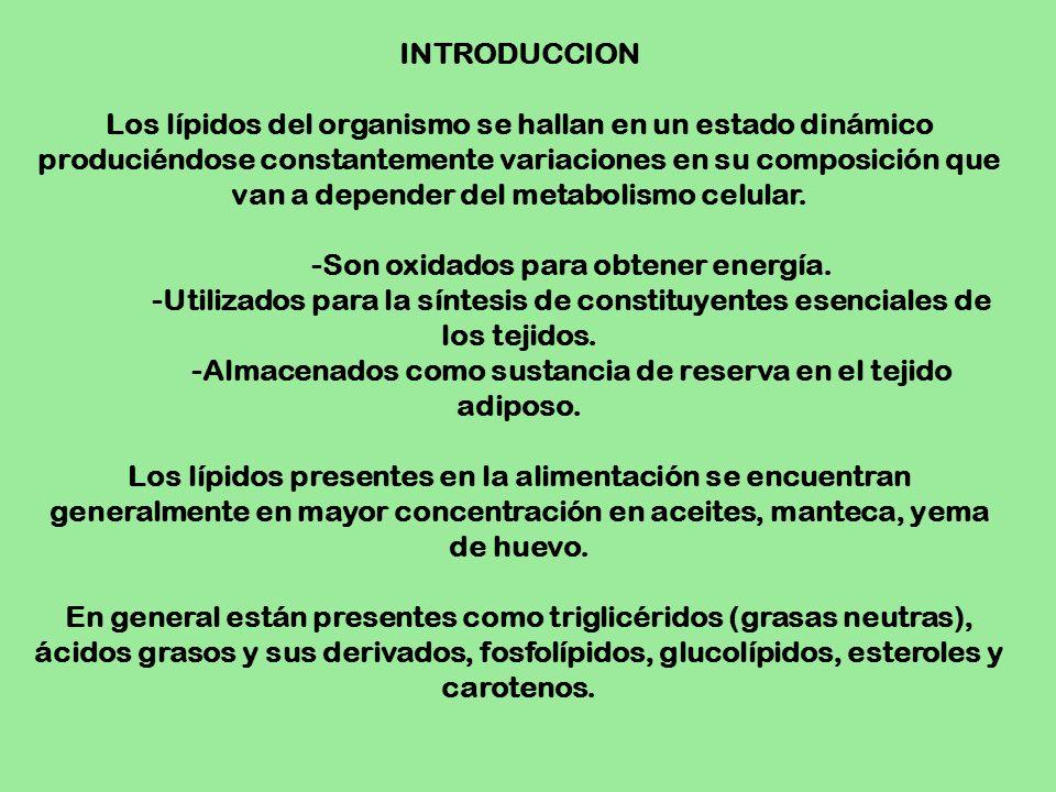 INTRODUCCION Los lípidos del organismo se hallan en un estado dinámico produciéndose constantemente variaciones en su composición que van a depender d
