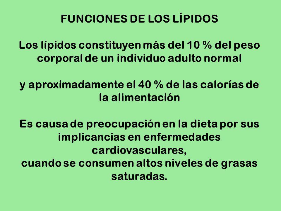 FUNCIONES DE LOS LÍPIDOS Los lípidos constituyen más del 10 % del peso corporal de un individuo adulto normal y aproximadamente el 40 % de las caloría