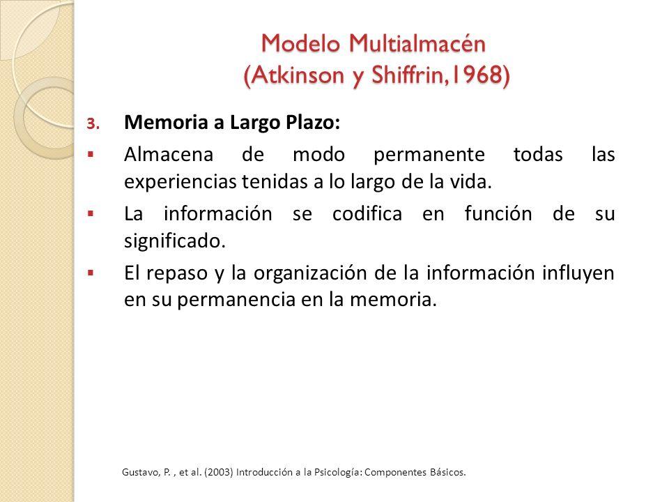 3. Memoria a Largo Plazo: Almacena de modo permanente todas las experiencias tenidas a lo largo de la vida. La información se codifica en función de s