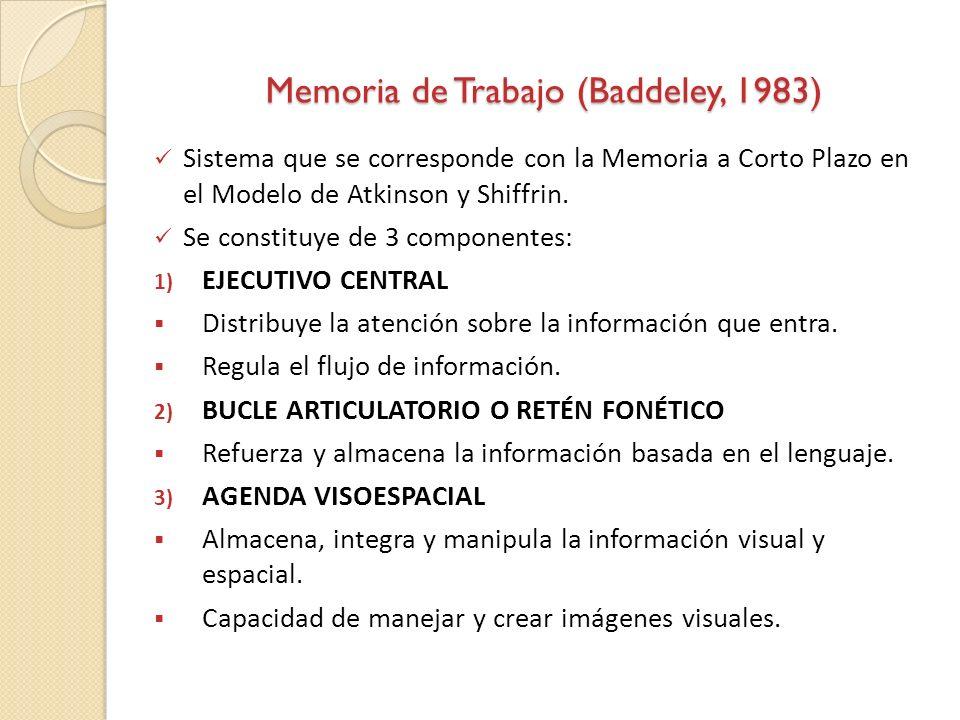 Memoria de Trabajo (Baddeley, 1983) Sistema que se corresponde con la Memoria a Corto Plazo en el Modelo de Atkinson y Shiffrin. Se constituye de 3 co