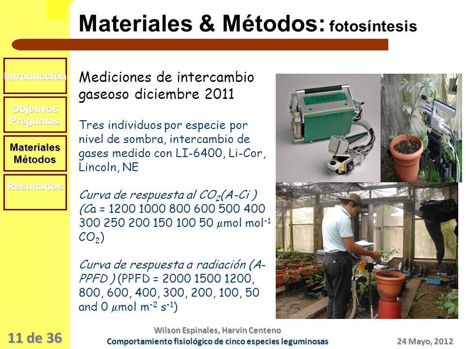 11 de 36 Materiales & Métodos: fotosíntesis Introducción ObjetivosPreguntas MaterialesMétodos Resultados Mediciones de intercambio gaseoso diciembre 2011 Tres individuos por especie por nivel de sombra, intercambio de gases medido con LI-6400, Li-Cor, Lincoln, NE Curva de respuesta al CO 2 (A-Ci ) (Ca = 1200 1000 800 600 500 400 300 250 200 150 100 50 mol mol -1 CO 2 ) Curva de respuesta a radiación (A- PPFD ) (PPFD = 2000 1500 1200, 800, 600, 400, 300, 200, 100, 50 and 0 mol m -2 s -1 ) 24 Mayo, 2012 Wilson Espinales, Harvin Centeno Comportamiento fisiológico de cinco especies leguminosas