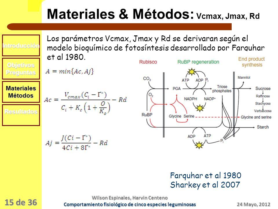 15 de 36 Materiales & Métodos: Vcmax, Jmax, Rd Introducción ObjetivosPreguntas MaterialesMétodos Resultados Los parámetros Vcmax, Jmax y Rd se derivaran según el modelo bioquímico de fotosíntesis desarrollado por Farquhar et al 1980.