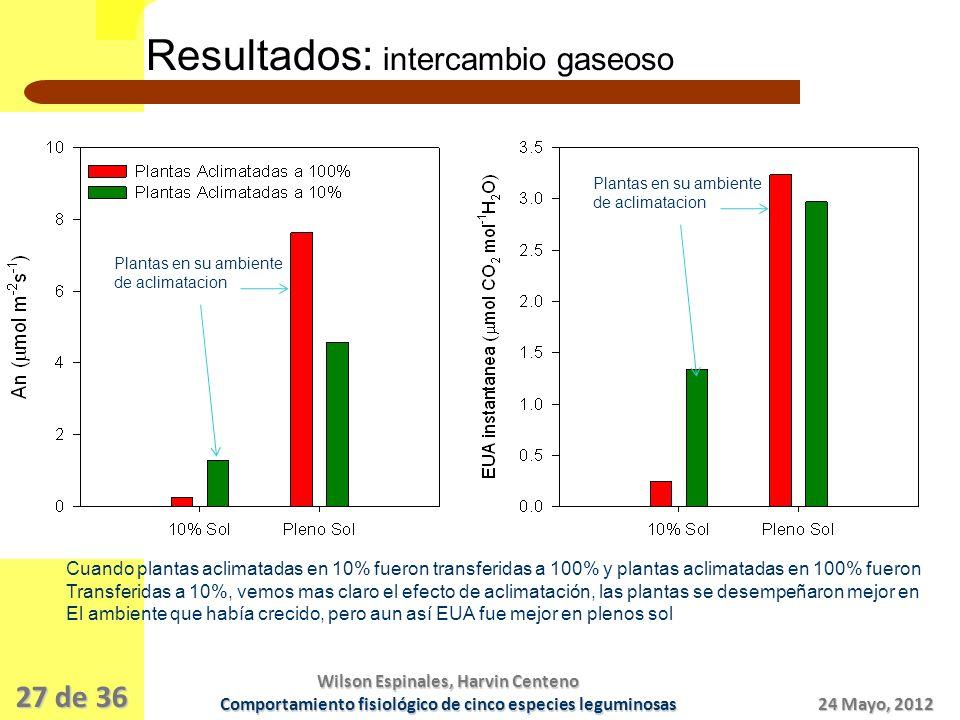 27 de 36 Introducción ObjetivosPreguntas MaterialesMétodos Resultados 24 Mayo, 2012 Wilson Espinales, Harvin Centeno Comportamiento fisiológico de cinco especies leguminosas Resultados: intercambio gaseoso Plantas en su ambiente de aclimatacion Plantas en su ambiente de aclimatacion Cuando plantas aclimatadas en 10% fueron transferidas a 100% y plantas aclimatadas en 100% fueron Transferidas a 10%, vemos mas claro el efecto de aclimatación, las plantas se desempeñaron mejor en El ambiente que había crecido, pero aun así EUA fue mejor en plenos sol