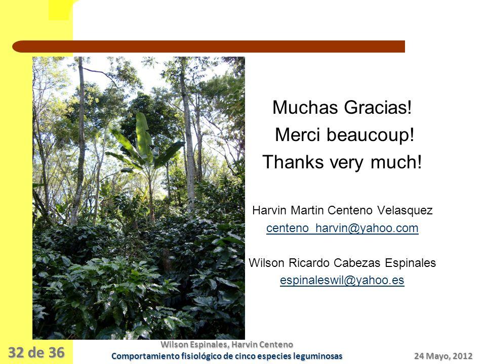 32 de 36 Muchas Gracias.Merci beaucoup. Thanks very much.