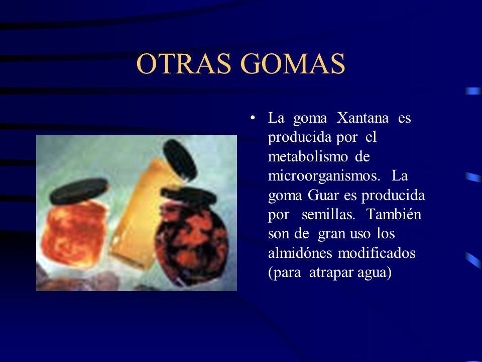 OTRAS GOMAS La goma Xantana es producida por el metabolismo de microorganismos. La goma Guar es producida por semillas. También son de gran uso los al