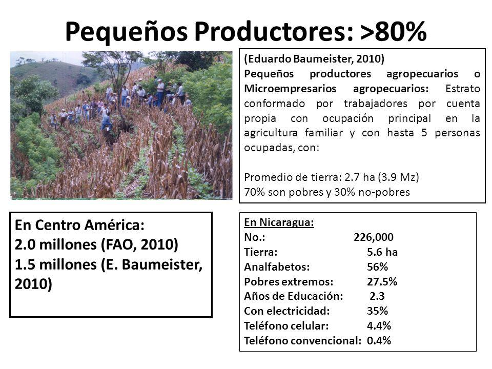 Pequeños Productores: >80% (Eduardo Baumeister, 2010) Pequeños productores agropecuarios o Microempresarios agropecuarios: Estrato conformado por trab