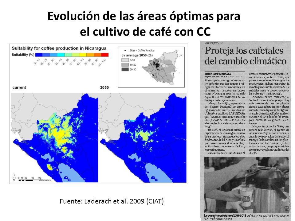 Evolución de las áreas óptimas para el cultivo de café con CC Fuente: Laderach et al. 2009 (CIAT)