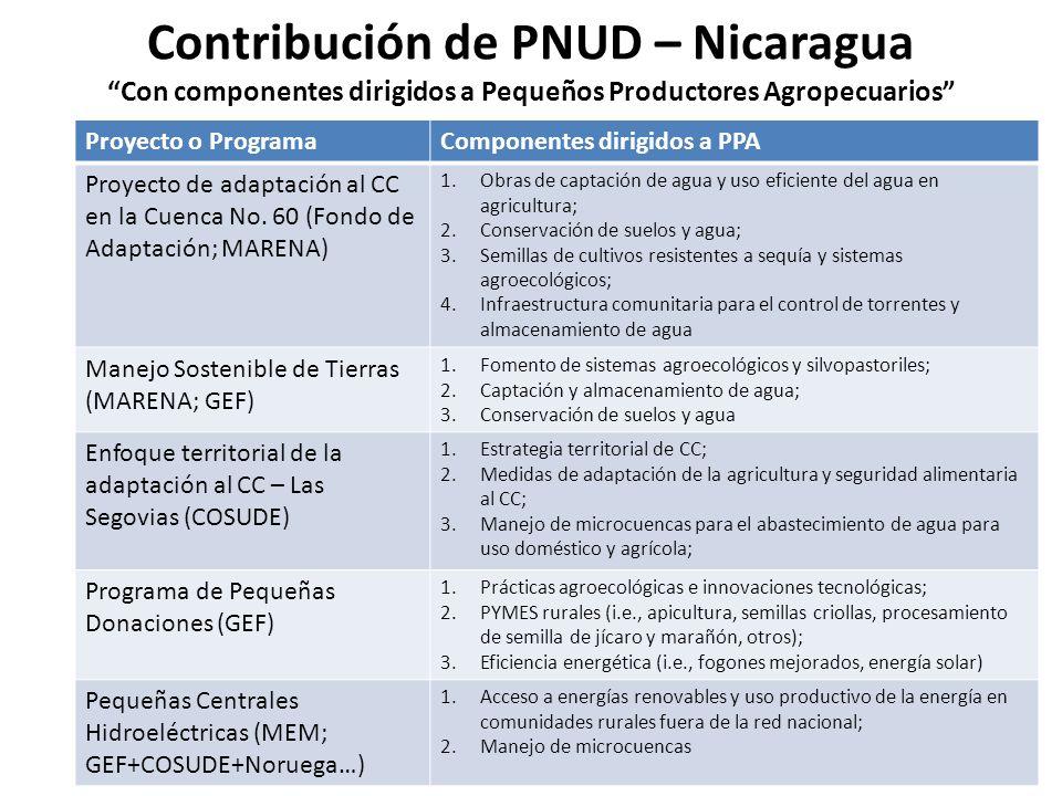 Contribución de PNUD – Nicaragua Con componentes dirigidos a Pequeños Productores Agropecuarios Proyecto o ProgramaComponentes dirigidos a PPA Proyect