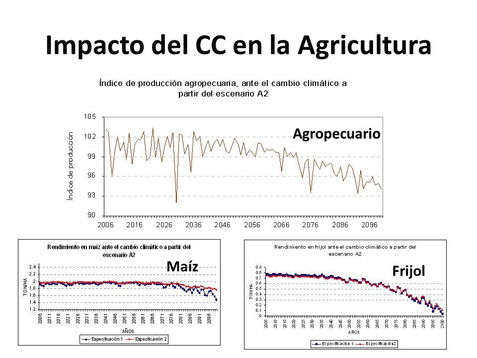 ¿Qué medidas de adaptación se tomaron en Brasil.