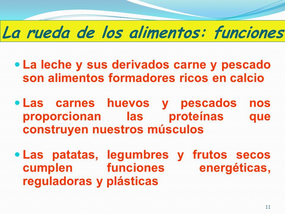 La rueda de los alimentos: funciones La leche y sus derivados carne y pescado son alimentos formadores ricos en calcio Las carnes huevos y pescados no