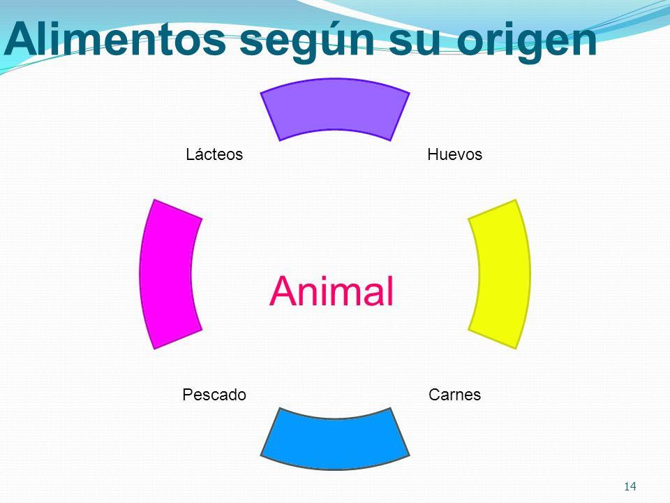 Alimentos según su origen Huevos CarnesPescado Lácteos 14 Animal