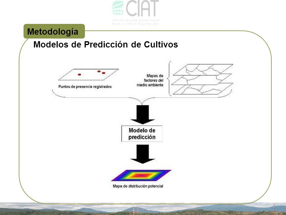 Metodología Modelos de Predicción de Cultivos