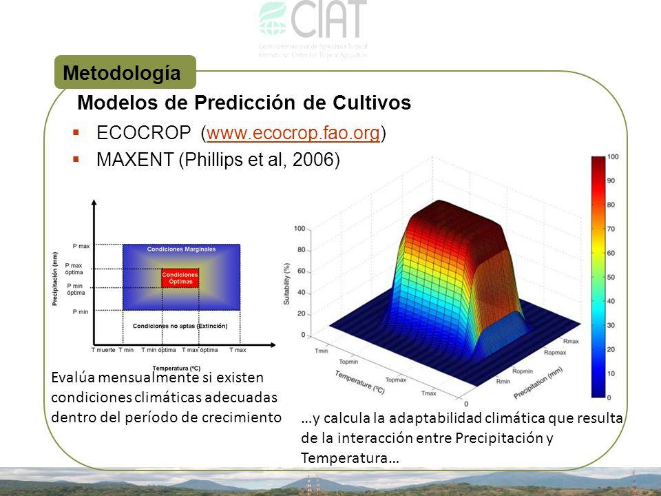 Metodología ECOCROP (www.ecocrop.fao.org)www.ecocrop.fao.org MAXENT (Phillips et al, 2006) Modelos de Predicción de Cultivos Evalúa mensualmente si ex