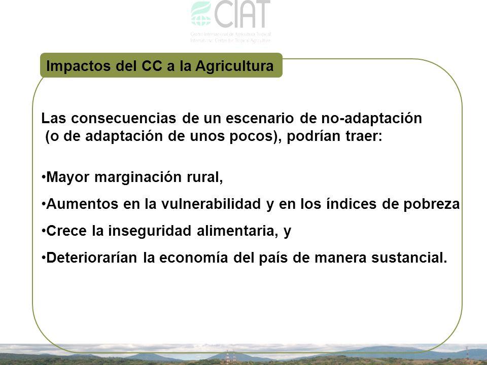 Impactos del CC a la Agricultura Las consecuencias de un escenario de no-adaptación (o de adaptación de unos pocos), podrían traer: Mayor marginación