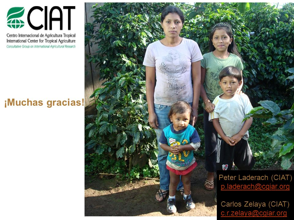 ¡Muchas gracias! Peter Laderach (CIAT) p.laderach@cgiar.org Carlos Zelaya (CIAT) c.r.zelaya@cgiar.org