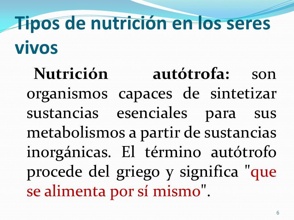 Tipos de nutrición en los seres vivos Nutrición autótrofa: son organismos capaces de sintetizar sustancias esenciales para sus metabolismos a partir d