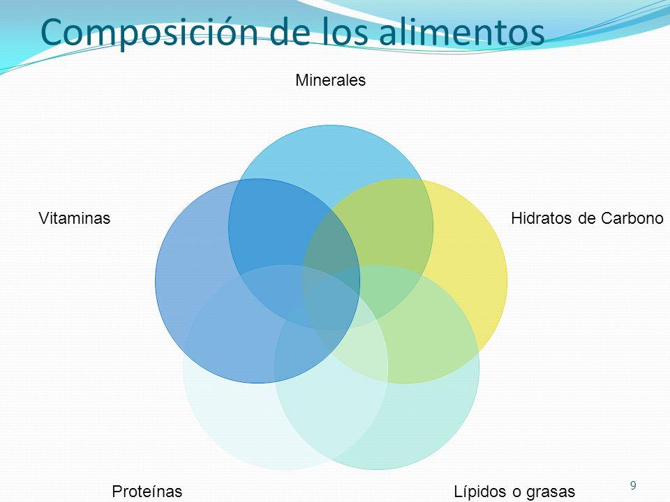 Composición de los alimentos Minerales Hidratos de Carbono Lípidos o grasas Proteínas Vitaminas 9