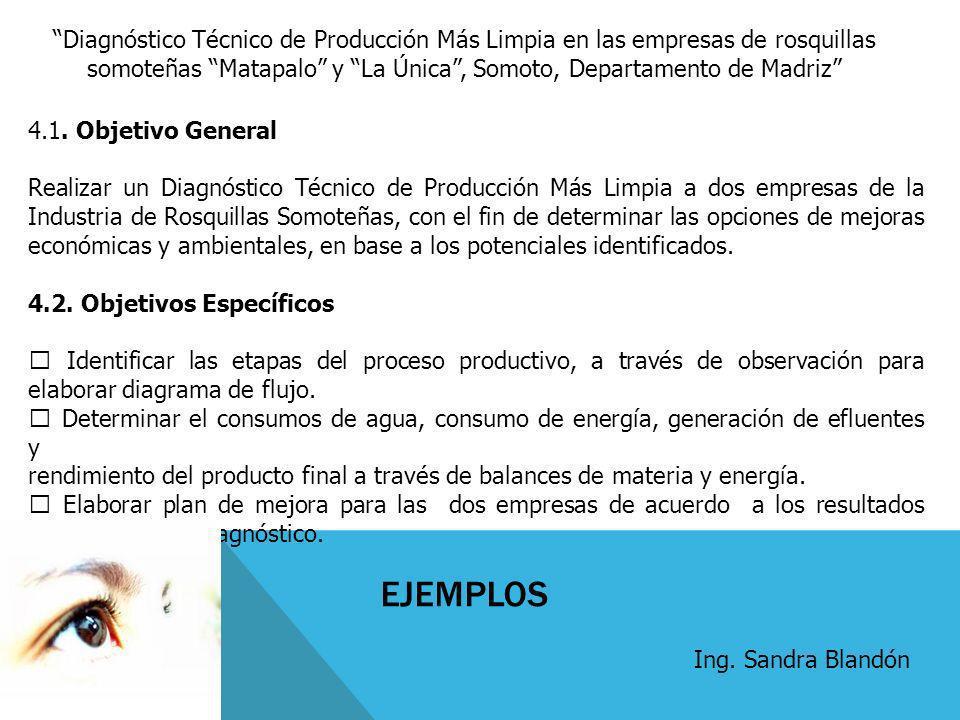 Diagnóstico Técnico de Producción Más Limpia en las empresas de rosquillas somoteñas Matapalo y La Única, Somoto, Departamento de Madriz 4.1. Objetivo