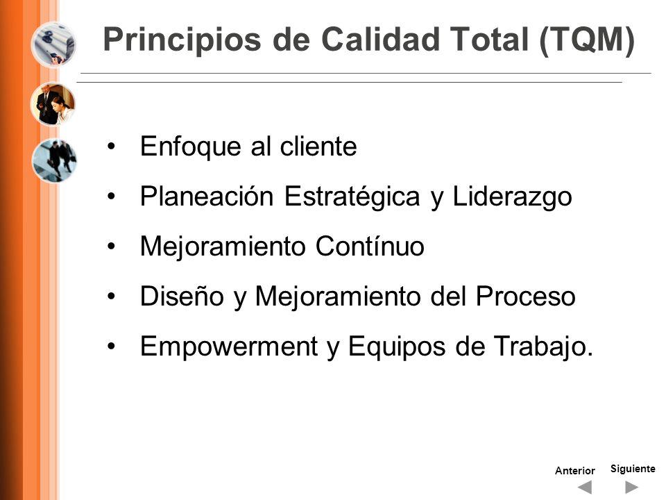 Principios de Calidad Total (TQM) Siguiente Anterior Enfoque al cliente Planeación Estratégica y Liderazgo Mejoramiento Contínuo Diseño y Mejoramiento