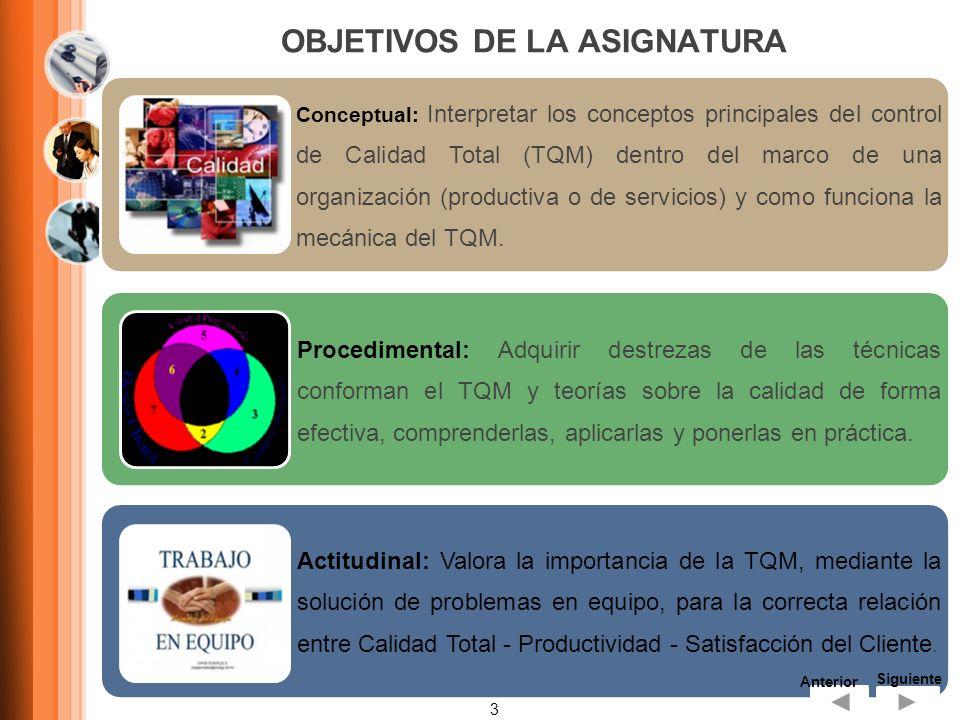 OBJETIVOS DE LA ASIGNATURA 3 Conceptual: Interpretar los conceptos principales del control de Calidad Total (TQM) dentro del marco de una organización