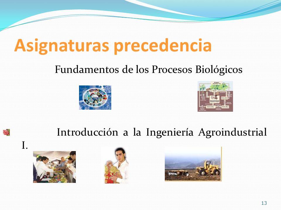Asignaturas precedencia Fundamentos de los Procesos Biológicos Introducción a la Ingeniería Agroindustrial I. 13