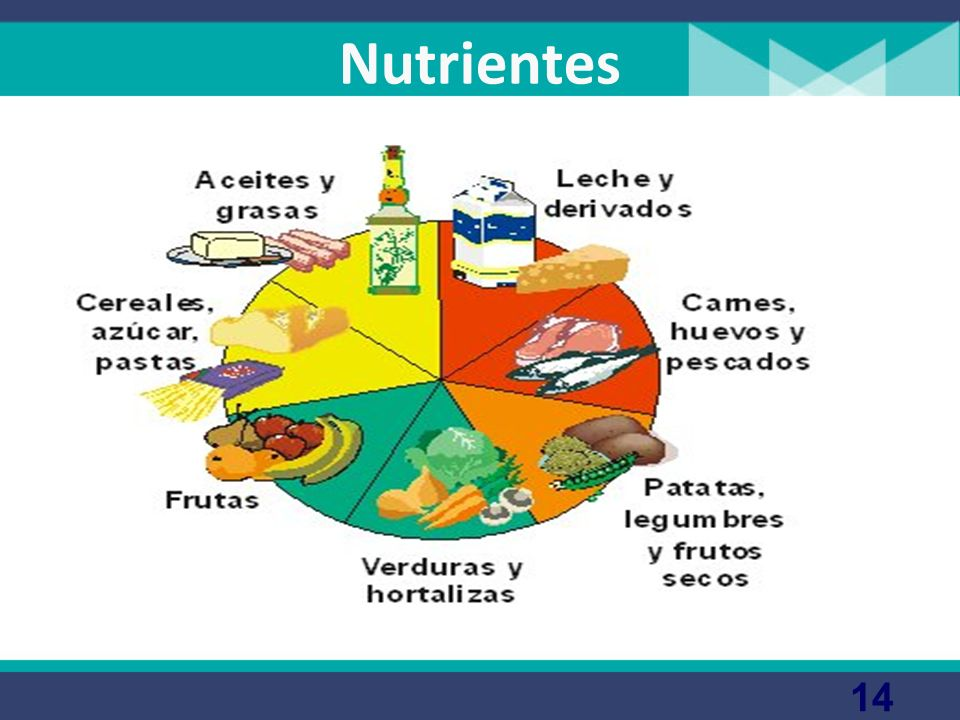 Alimentación La alimentación comprende un conjunto de actos voluntarios y conscientes que van dirigidos a la elección, preparación e ingestión de los
