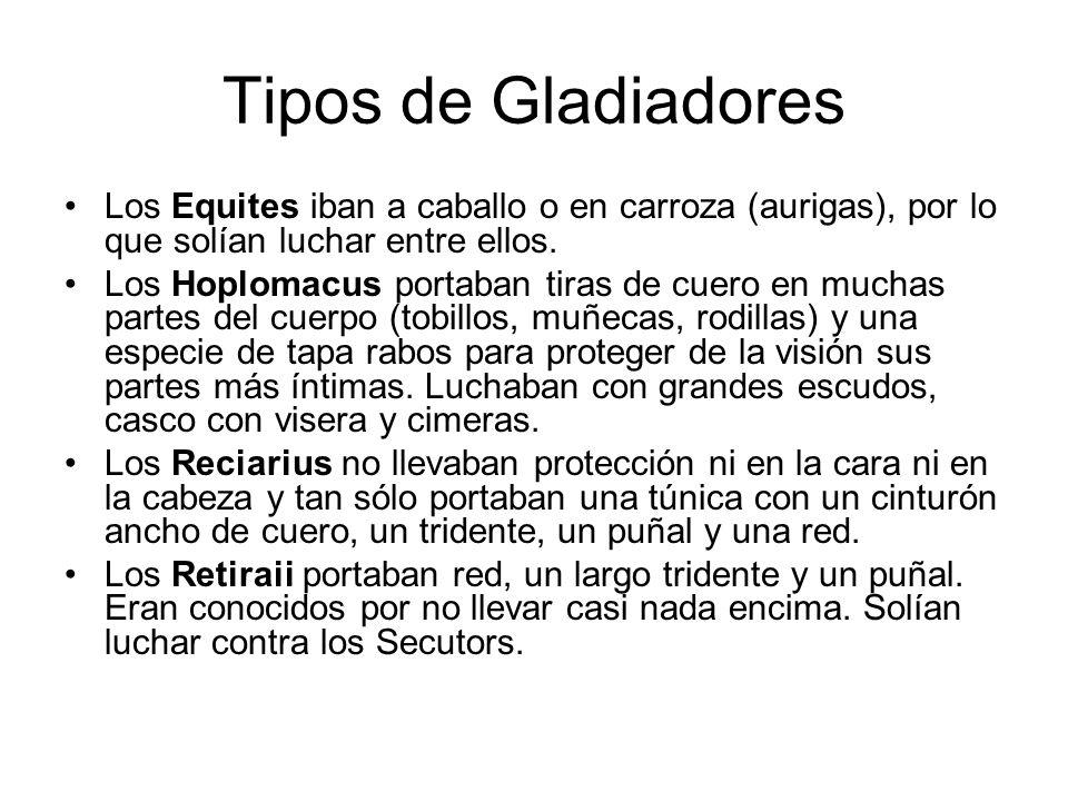 Tipos de Gladiadores Los Equites iban a caballo o en carroza (aurigas), por lo que solían luchar entre ellos. Los Hoplomacus portaban tiras de cuero e