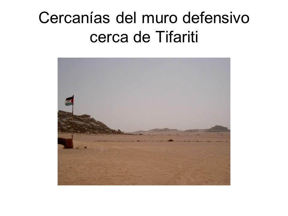 Cercanías del muro defensivo cerca de Tifariti