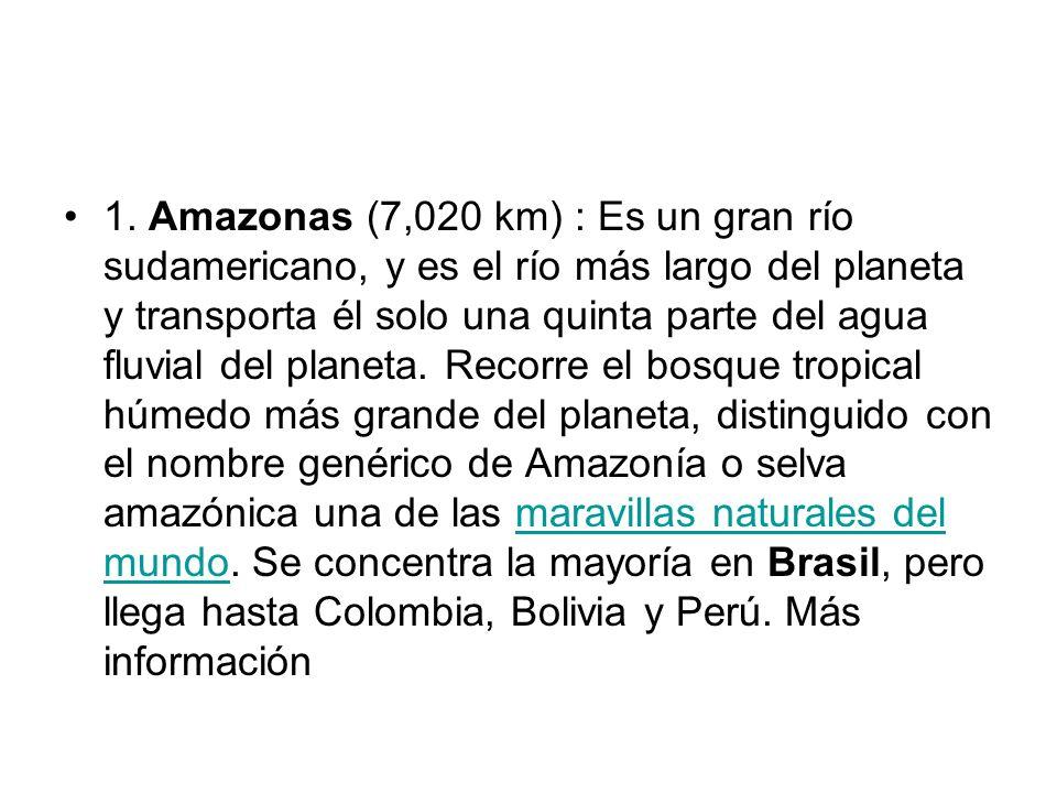 1. Amazonas (7,020 km) : Es un gran río sudamericano, y es el río más largo del planeta y transporta él solo una quinta parte del agua fluvial del pla