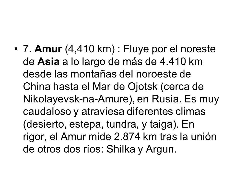 7. Amur (4,410 km) : Fluye por el noreste de Asia a lo largo de más de 4.410 km desde las montañas del noroeste de China hasta el Mar de Ojotsk (cerca