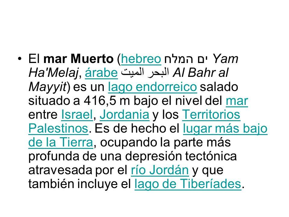 El mar Muerto (hebreo ים המלח Yam Ha'Melaj, árabe البحر الميت Al Bahr al Mayyit) es un lago endorreico salado situado a 416,5 m bajo el nivel del mar