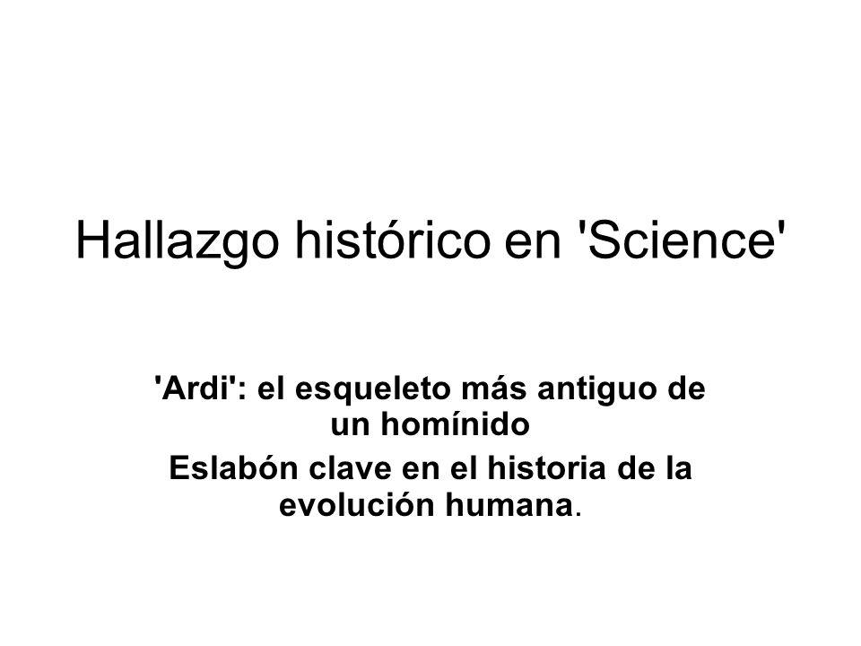 Hallazgo histórico en 'Science' 'Ardi': el esqueleto más antiguo de un homínido Eslabón clave en el historia de la evolución humana.