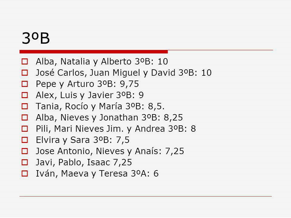 3ºB Alba, Natalia y Alberto 3ºB: 10 José Carlos, Juan Miguel y David 3ºB: 10 Pepe y Arturo 3ºB: 9,75 Alex, Luis y Javier 3ºB: 9 Tania, Rocío y María 3