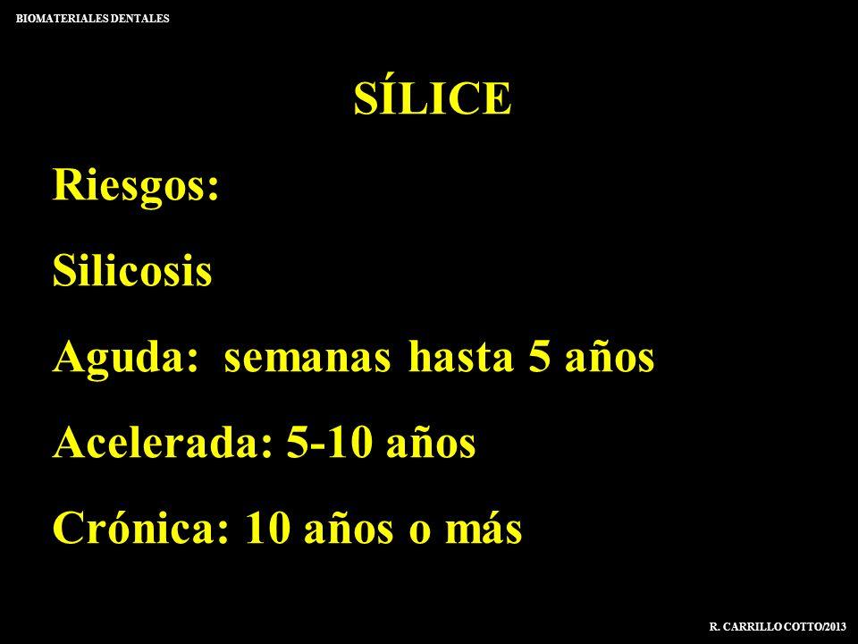 SÍLICE Riesgos: Silicosis Aguda:semanas hasta 5 años Acelerada: 5-10 años Crónica: 10 años o más BIOMATERIALES DENTALES R. CARRILLO COTTO/2013