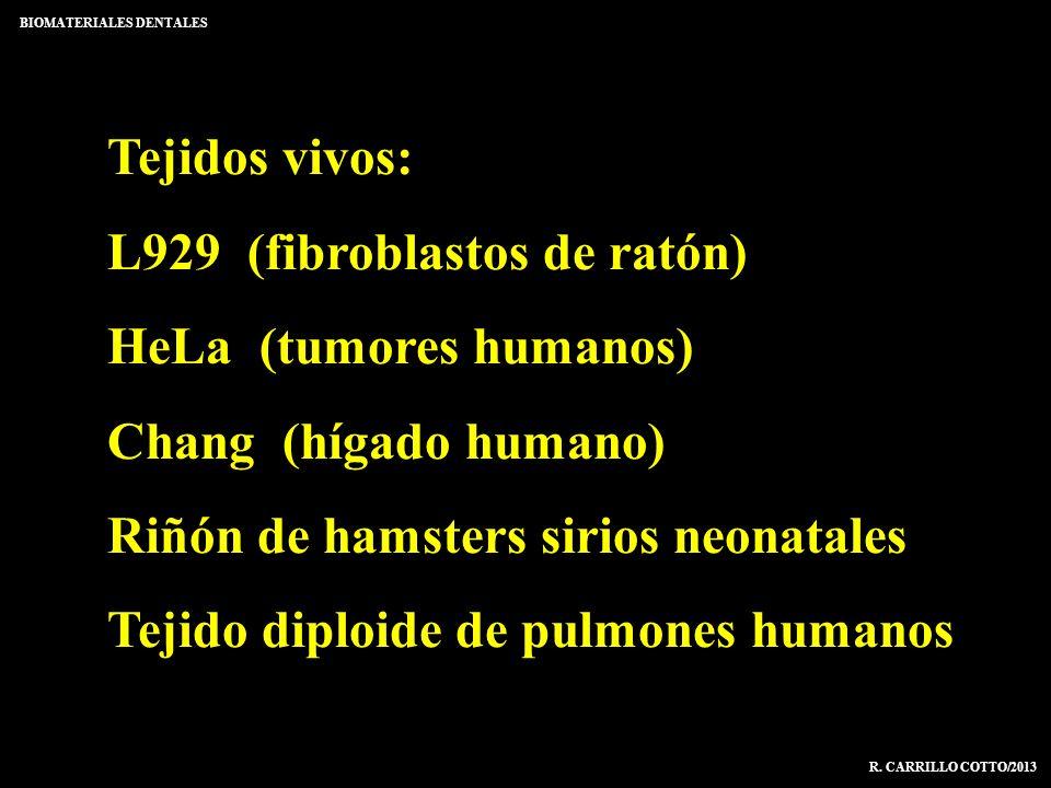 Tejidos vivos: L929 (fibroblastos de ratón) HeLa (tumores humanos) Chang (hígado humano) Riñón de hamsters sirios neonatales Tejido diploide de pulmon