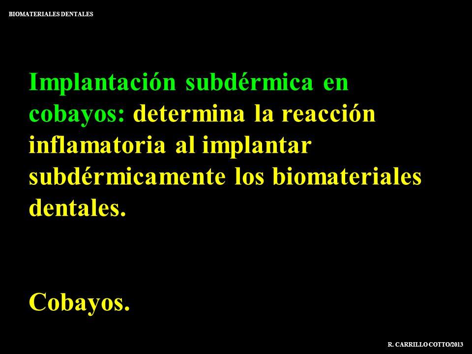 Implantación subdérmica en cobayos: determina la reacción inflamatoria al implantar subdérmicamente los biomateriales dentales. Cobayos. BIOMATERIALES