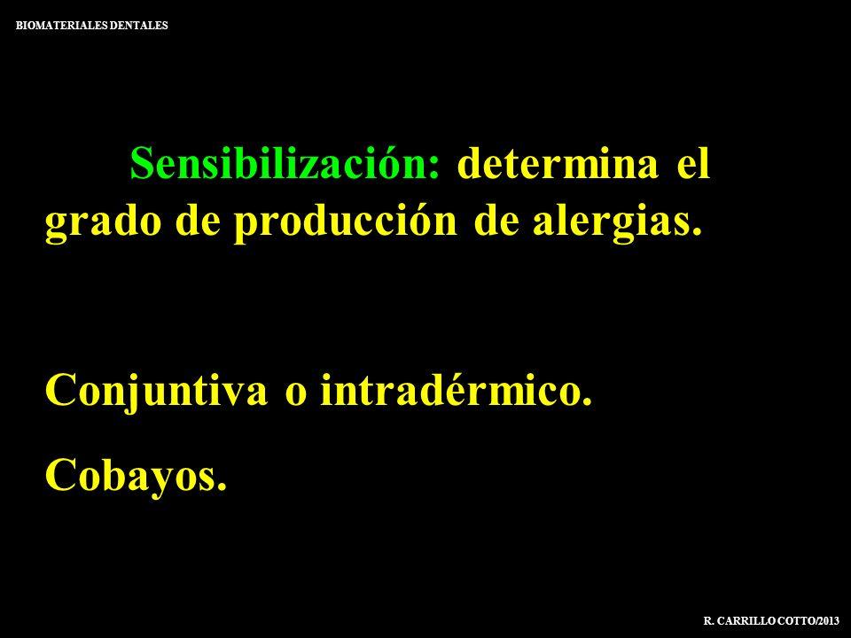 Sensibilización: determina el grado de producción de alergias. Conjuntiva o intradérmico. Cobayos. BIOMATERIALES DENTALES R. CARRILLO COTTO/2013