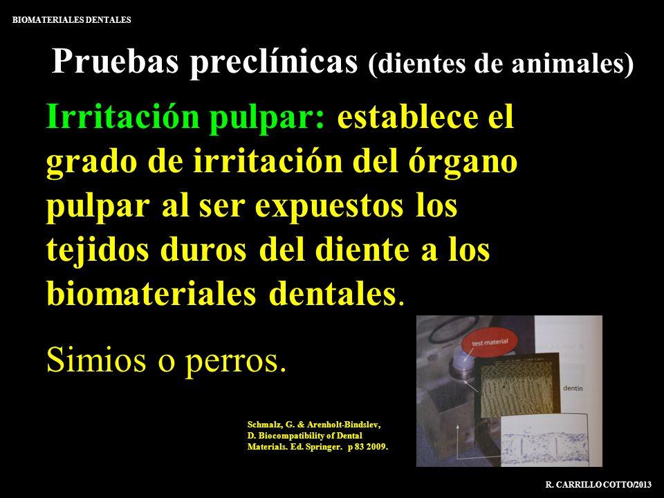 Pruebas preclínicas (dientes de animales) BIOMATERIALES DENTALES R. CARRILLO COTTO/2013 Irritación pulpar: establece el grado de irritación del órgano