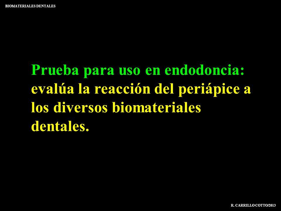 Prueba para uso en endodoncia: evalúa la reacción del periápice a los diversos biomateriales dentales. BIOMATERIALES DENTALES R. CARRILLO COTTO/2013