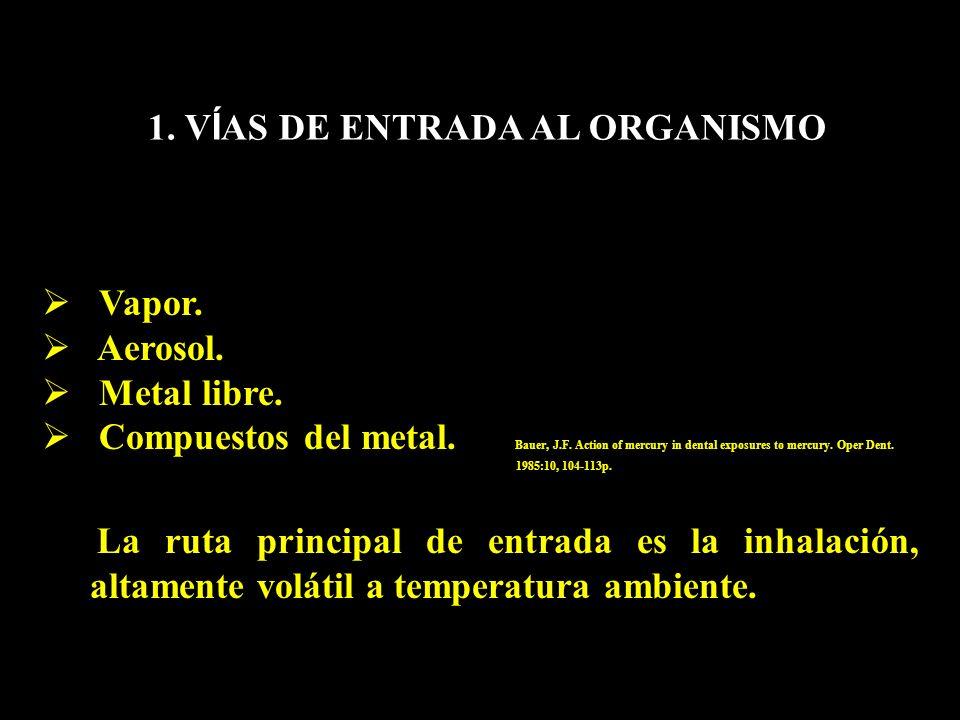 1. V Í AS DE ENTRADA AL ORGANISMO Vapor. Aerosol. Metal libre. Compuestos del metal. Bauer, J.F. Action of mercury in dental exposures to mercury. Ope