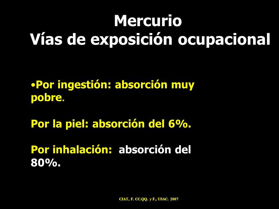 Por ingestión: absorción muy pobre. Por la piel: absorción del 6%. Por inhalación: absorción del 80%. Mercurio Vías de exposición ocupacional CIAT, F.