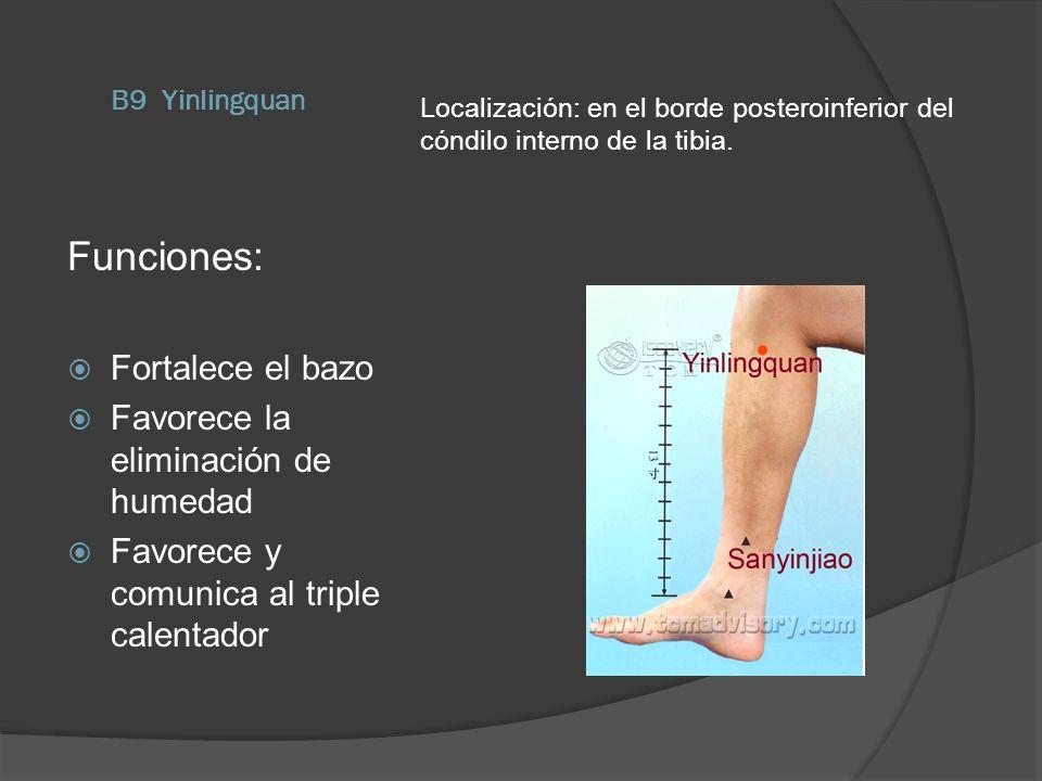 B9 Yinlingquan Localización: en el borde posteroinferior del cóndilo interno de la tibia. Funciones: Fortalece el bazo Favorece la eliminación de hume