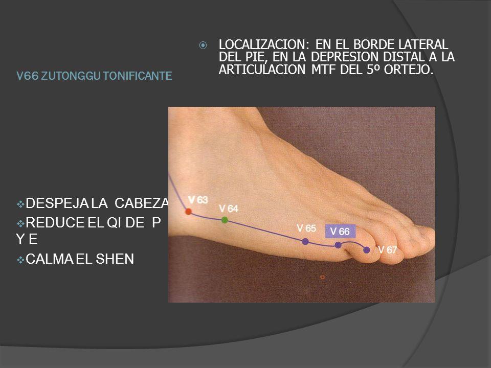 P5 chize (ELEMENTO AGUA Y DISPERSANTE DEL CANAL) Localización: en el pliegue del codo, en el lado radial del tendón del musculo bíceps braquial.