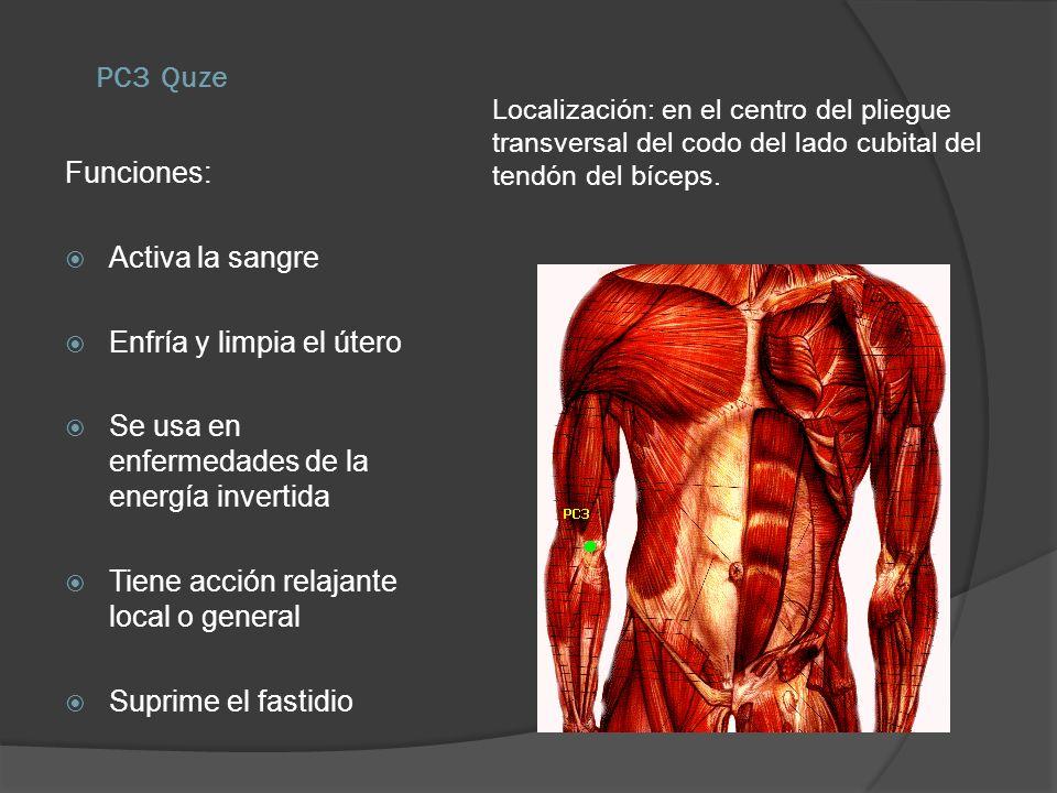 PC3 Quze Localización: en el centro del pliegue transversal del codo del lado cubital del tendón del bíceps. Funciones: Activa la sangre Enfría y limp