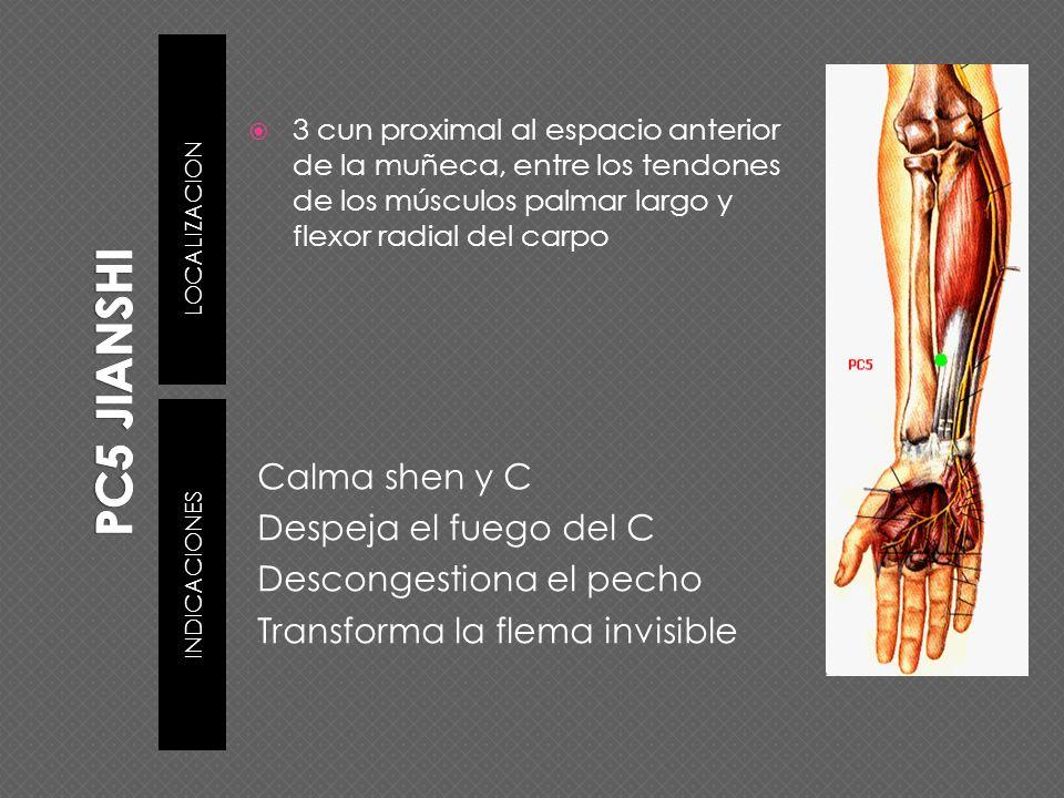 LOCALIZACION INDICACIONES 3 cun proximal al espacio anterior de la muñeca, entre los tendones de los músculos palmar largo y flexor radial del carpo C
