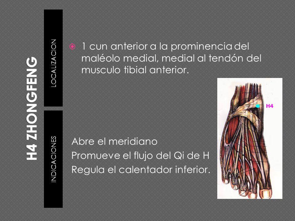 LOCALIZACION INDICACIONES 1 cun anterior a la prominencia del maléolo medial, medial al tendón del musculo tibial anterior. Abre el meridiano Promueve