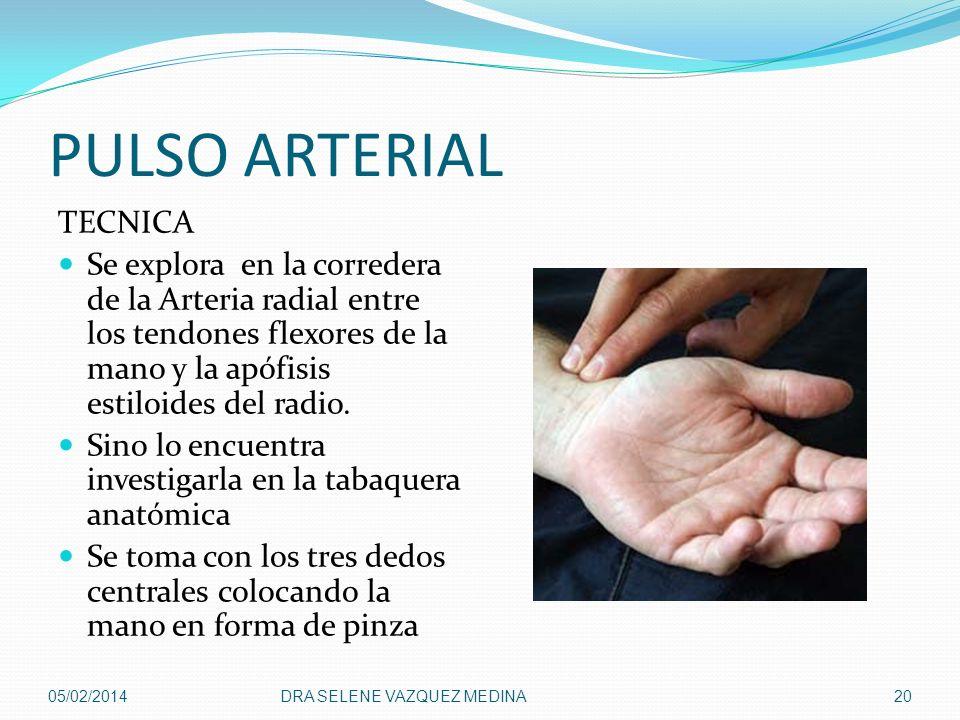 PULSO ARTERIAL TECNICA Se explora en la corredera de la Arteria radial entre los tendones flexores de la mano y la apófisis estiloides del radio. Sino